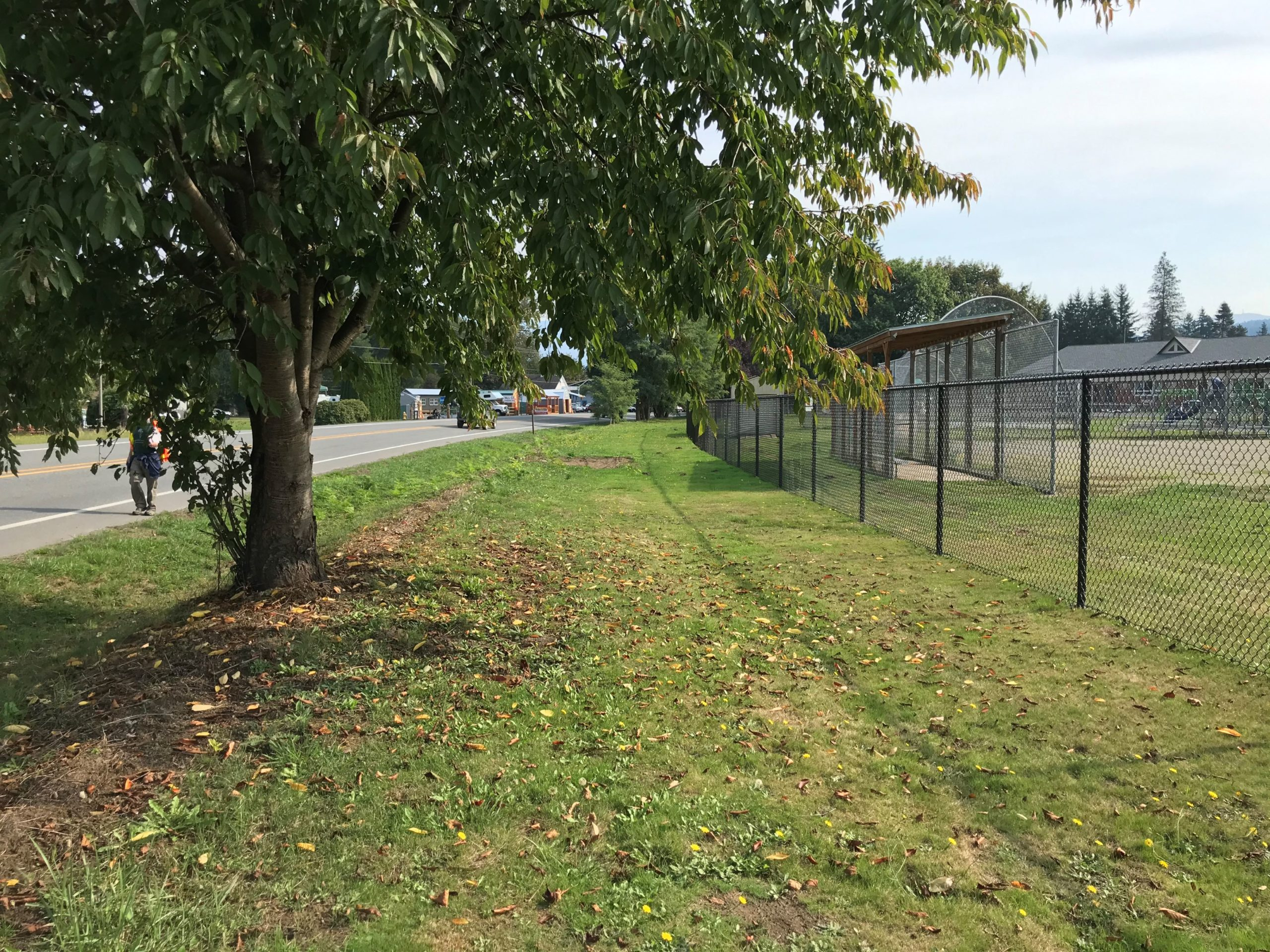 Image of the right of way along SR 202 in Fall City, adjacent to the Chief Kanim Middle School, which is the future location of the West Side Trail.